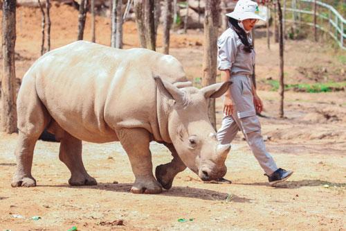 safari phú quốc 3