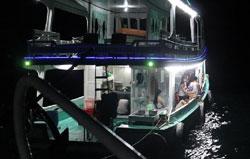 Câu mực đêm, câu cá Phú Quốc