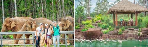tương tác với các loại động vật trong safari phú quốc